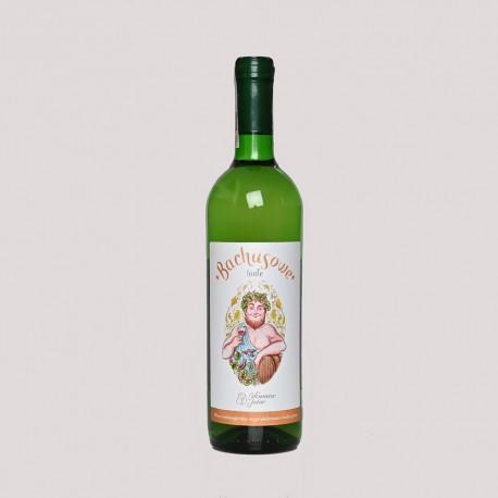 Winnica Julia- Bachusowe białe