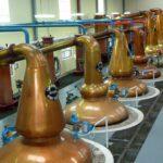 Glenfiddich i NFT czyli przyszłość alkoholi | eluxo.pl